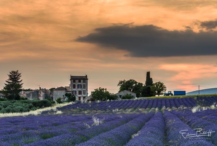 20170621_Provence_2157