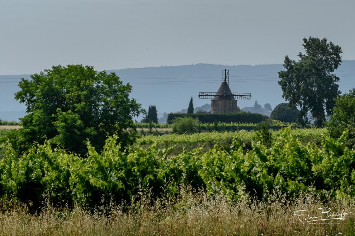 20170623_Provence_22566