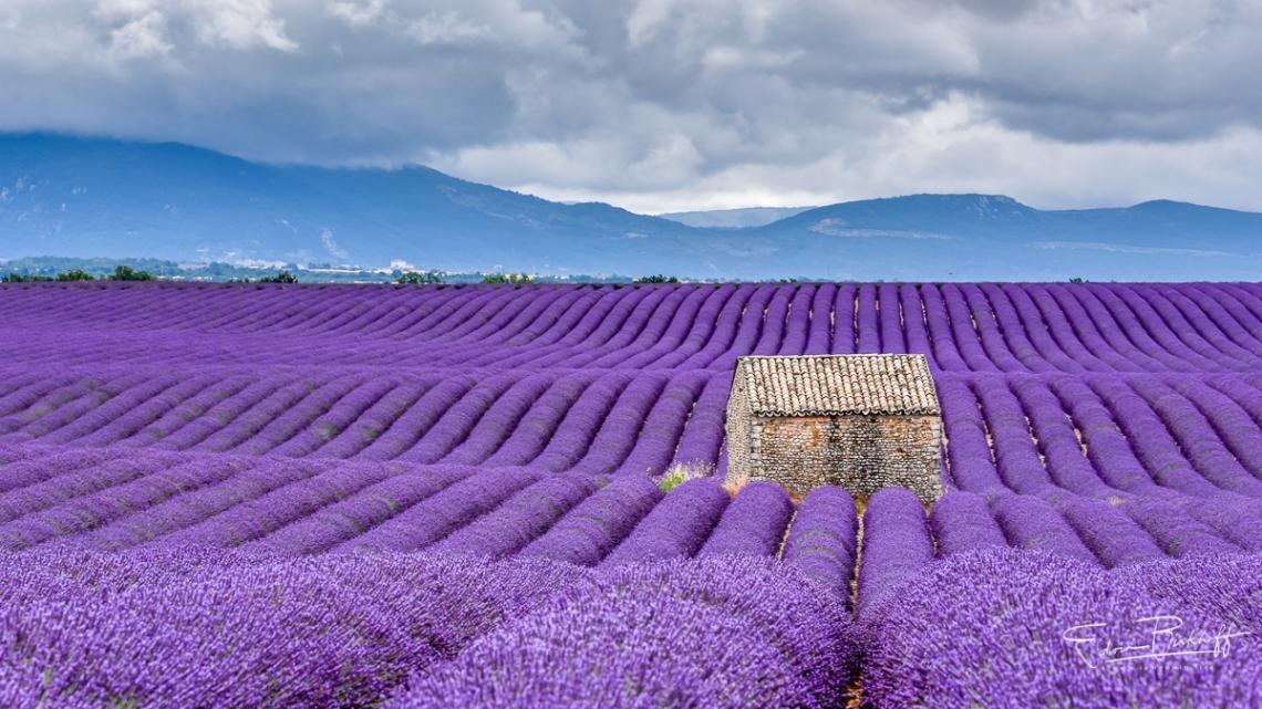 20170629_Provence_2956